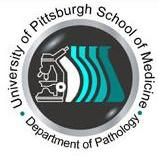 4a path logo